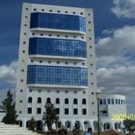 Bouri Hadj