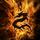 Dragon wallpaper high quality dragon wallpaper image amazing dragon