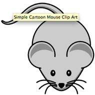 Mouse B