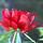 Profile20110901 9353 5aq3l9 0