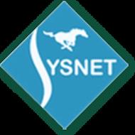 Sysnet Engineers